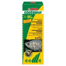 Sera Costapur / Костапур...
