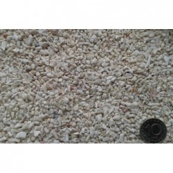 Коралов пясък - грунд N 10...