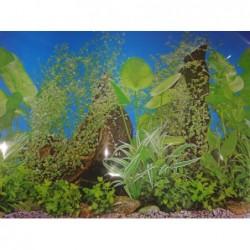Заден фон за аквариум N6 /...