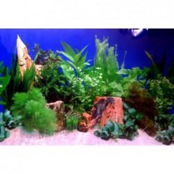 Заден фон за аквариум N7/...