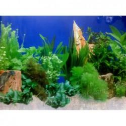 Заден фон за аквариум N9 /...