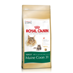 Royal Canin Maine Coon 31 /...